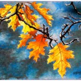 feuilles-bleues640