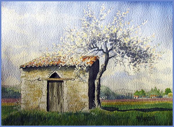 Le printemps provencal